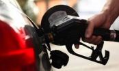Пореден спад на цената на петрола